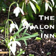 The Avalon Inn